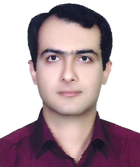 آقای مهندس محمد حسین قیصری